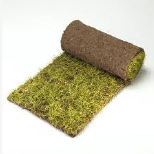Landscaping Grass Roll : Rolawn medallion lawn turf m roll square yards